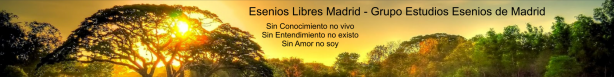 Grafica amigos: ESENIOS LIBRES MADRID