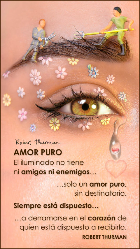 FRASES DOBLES AMOR PURO - ROBERT THURMAN