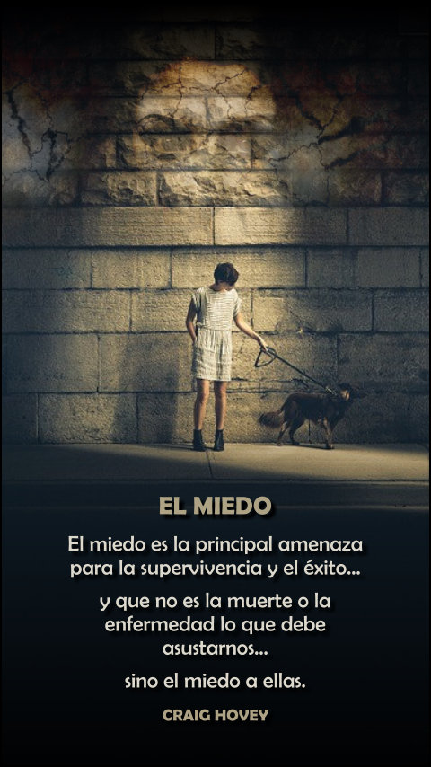 FRASES DOBLES MIEDO - CRAIG HOVEY