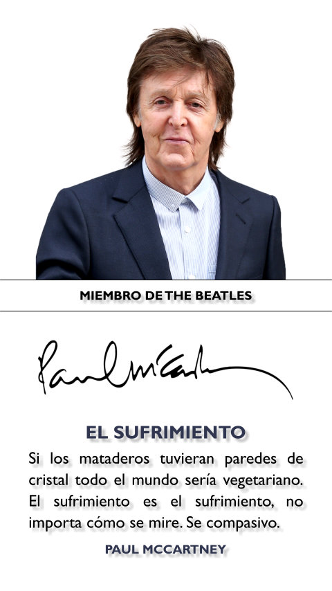 FRASES DOBLES SUFRIMIENTO - PAUL MCCARTNEY
