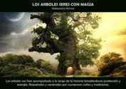 Los arboles seres con magia - La Iluminación