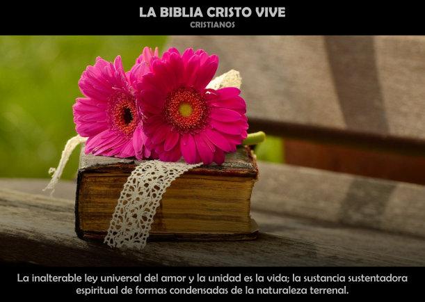 La biblia Cristo vive - Escrito por Cristianos