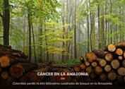 CÁNCER EN LA AMAZONIA