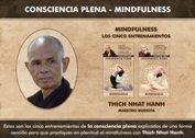 Los cinco entrenamientos de la consciencia plena - La Iluminación