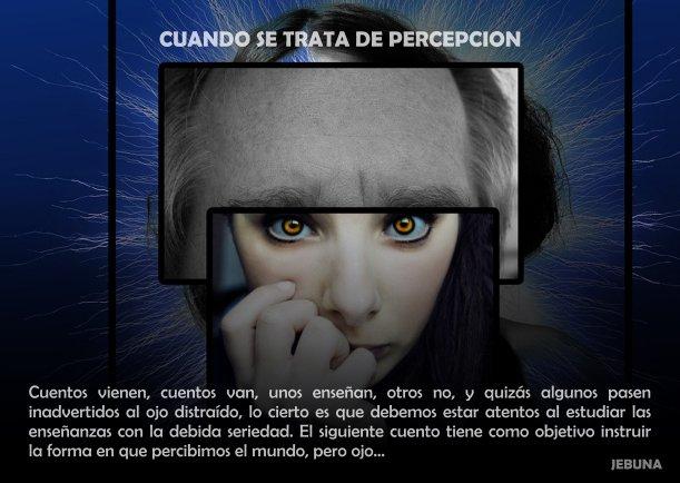 Cuando se trata de percepción - Escrito por Jebuna