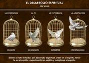 El desarrollo espiritual - La Iluminación