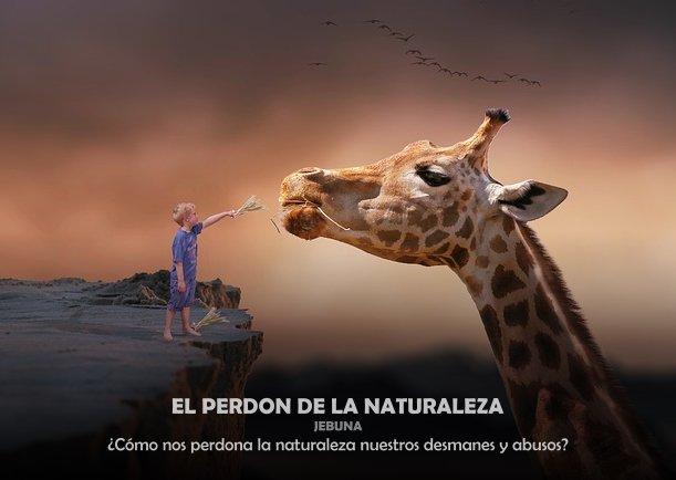 Grafica 'El perdón de la naturaleza' Categoria 'Ecologia' Palabra 'Naturaleza'