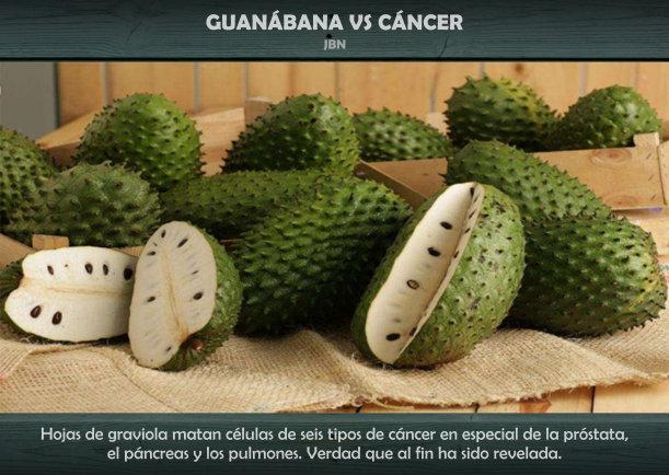 Guanábana contra cáncer - Escrito por JBN