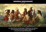 Indígenas vegetarianos - La Iluminación