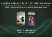 GRAFICAS LA ILUMINACION - JOE DISPENZA