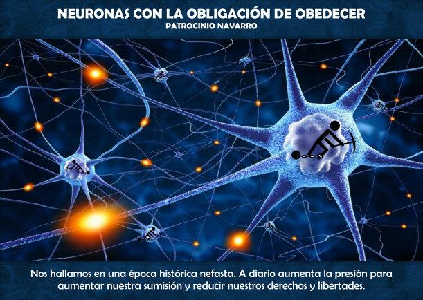 Neuronas con la obligación de obedecer - Escrito por Patrocinio Navarro