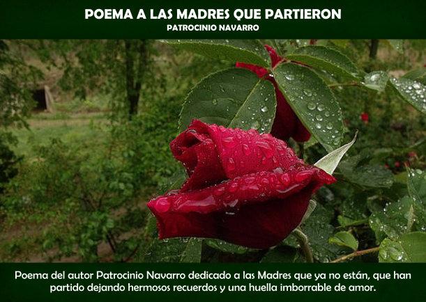 Poema a las Madres que partieron - Escrito por Patrocinio Navarro