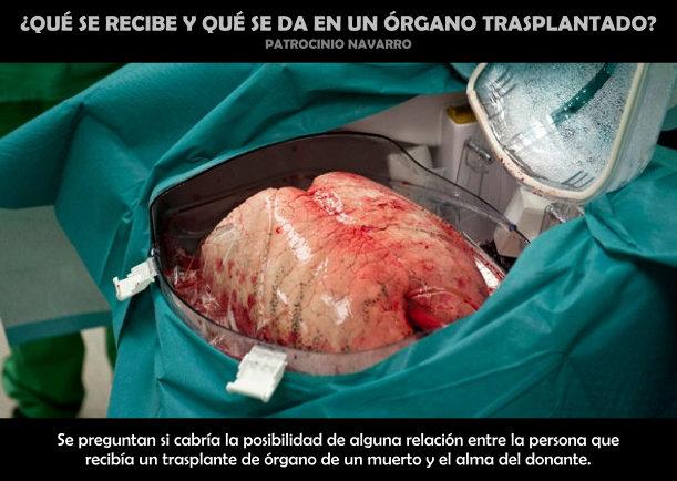 ¿Qué se recibe y da en un órgano trasplantado? - Escrito por Patrocinio Navarro