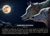Sabiduría indígena - La Iluminación