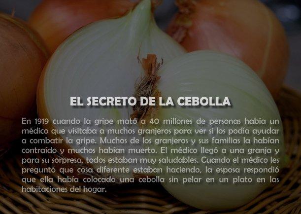 El secreto de la cebolla - Escrito por LIE