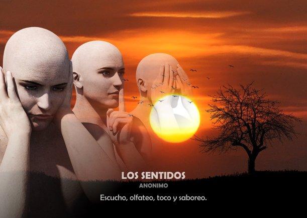 Los sentidos - Escrito por Jiddu Krishnamurti