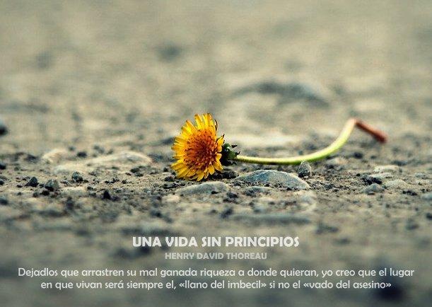 Una vida sin principios - Escrito por Henry David Thoreau